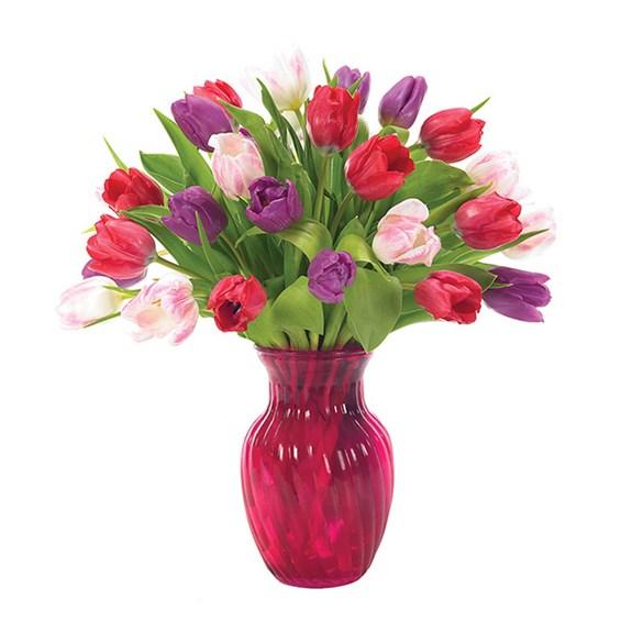 Multi-Color Tulip Bouquet   Santa Ana, CA